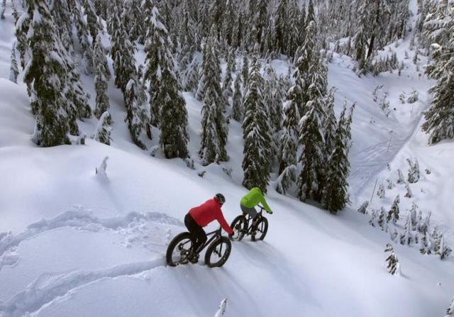 fat biking deep snow but downhill.jpg